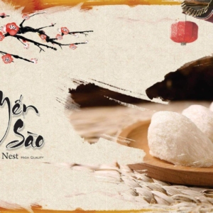 Công dụng của Tổ Yến-Yensaodongduong.com
