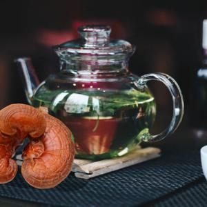 Nấm linh chi – Một trong những loại dược liệu có công dụng thần kì-Yensaodongduong.com